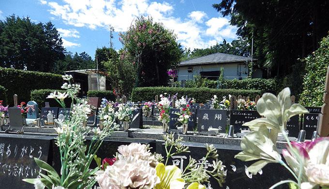 埼玉県でペット葬儀