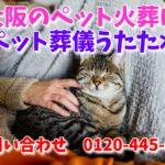 大阪のペット火葬